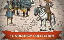 1C Strategy Collection Badge
