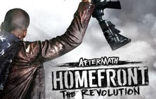 Homefront®: The Revolution - Aftermath Badge