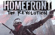 Homefront®: The Revolution Badge