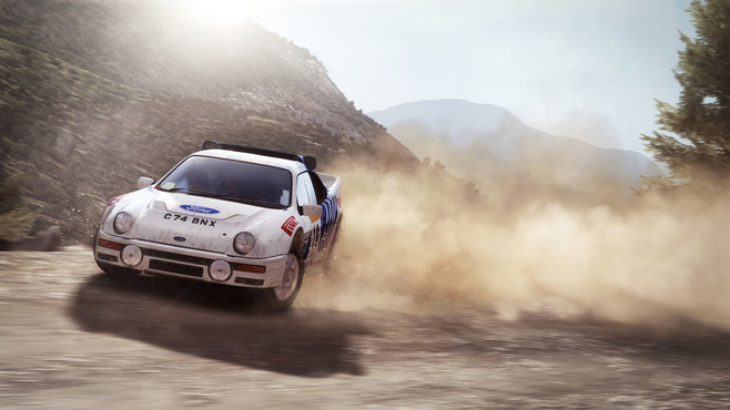 DiRT Rally Screenshot 3