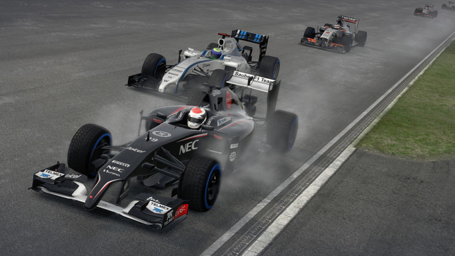 F1 2014 Screenshot 10