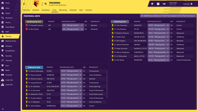 Football Manager 2019 Screenshot 6