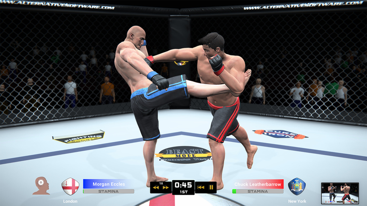 MMA Team Manager Screenshot 3