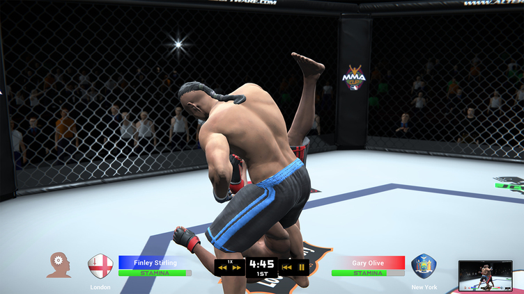 MMA Team Manager Screenshot 5