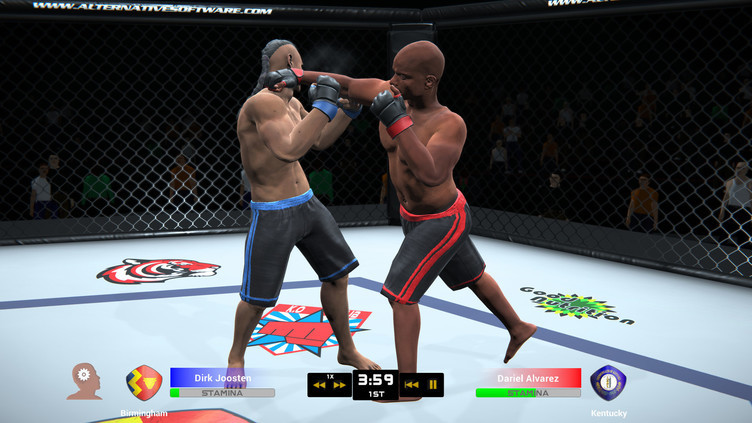 MMA Team Manager Screenshot 7