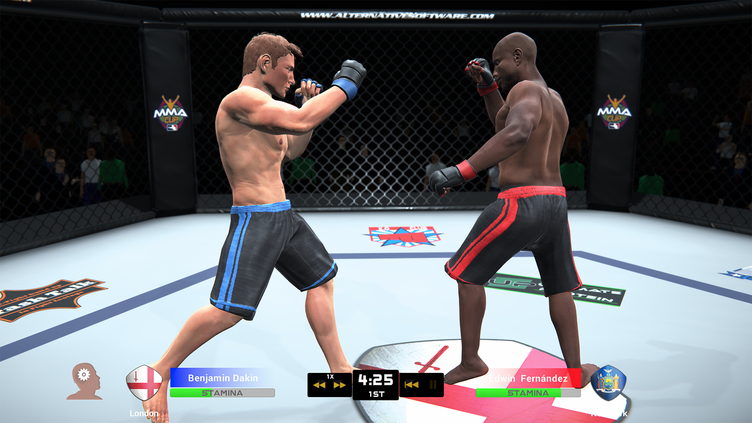 MMA Team Manager Screenshot 9