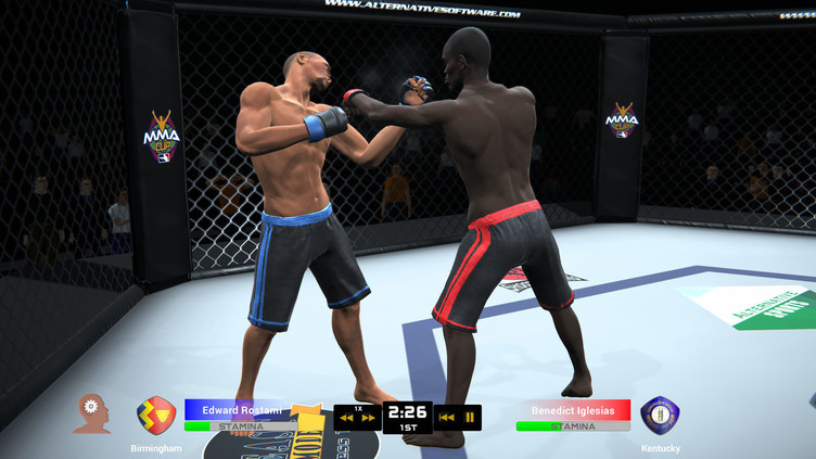 MMA Team Manager Screenshot 11