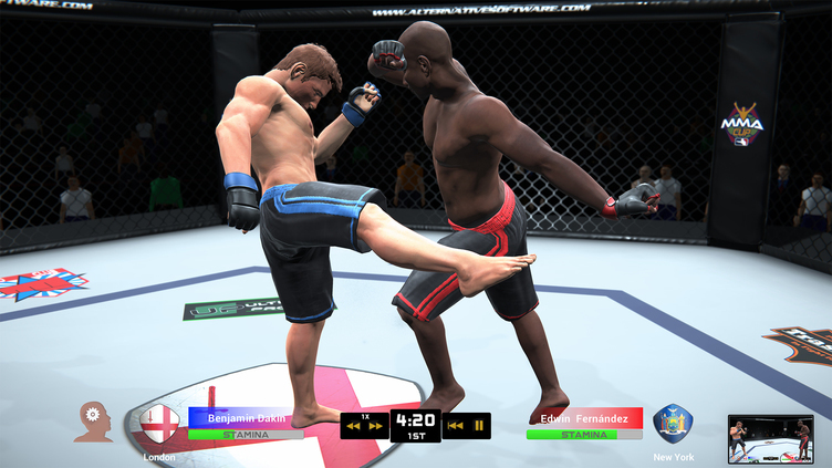MMA Team Manager Screenshot 13