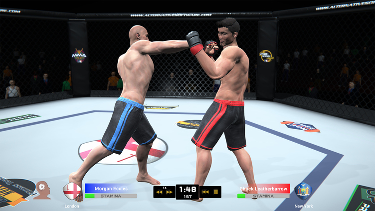 MMA Team Manager Screenshot 14