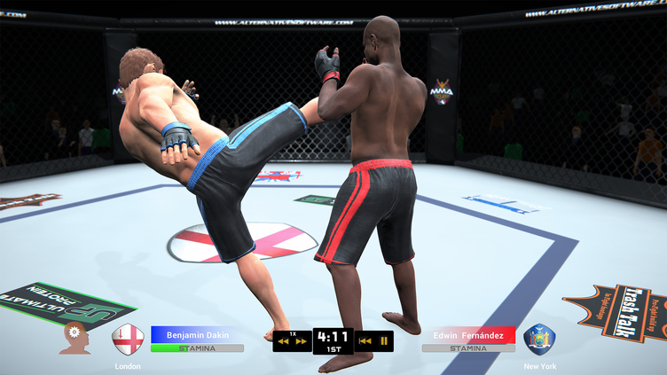 MMA Team Manager Screenshot 18