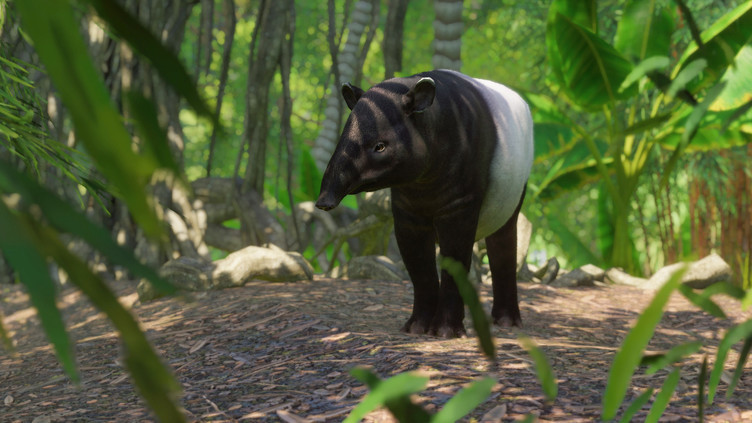 Planet Zoo: Southeast Asia Animal Pack Screenshot 6