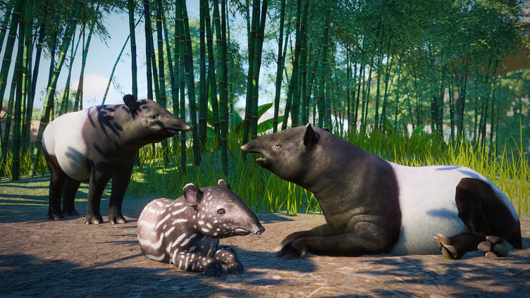 Planet Zoo: Southeast Asia Animal Pack Screenshot 10