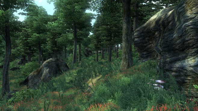 The Elder Scrolls IV: Oblivion Game of the Year Edition Screenshot 13