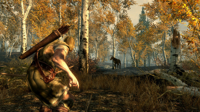 The Elder Scrolls V Skyrim Screenshot 5
