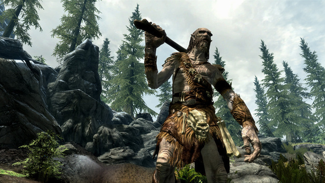 The Elder Scrolls V Skyrim Screenshot 6