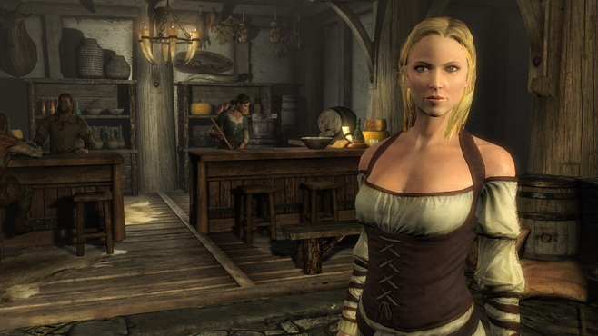 The Elder Scrolls V Skyrim Screenshot 9