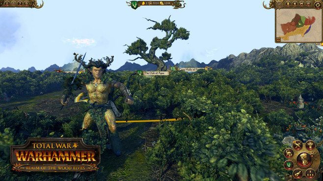 Total War: WARHAMMER - Realm of The Wood Elves Screenshot 6