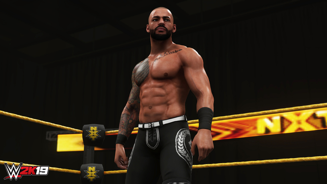WWE 2K19 Rising Stars Pack Screenshot 13